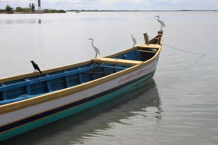 Mannar Harbour