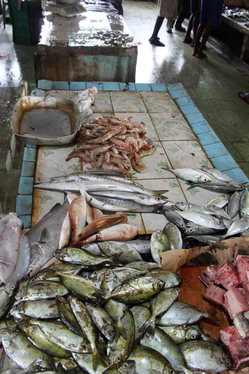 Fish Market, Mannar