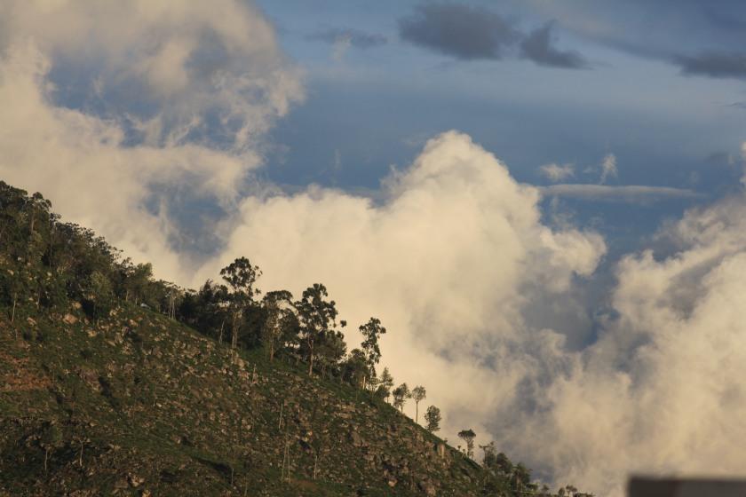 Haputale hillside