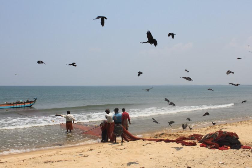Hauling in the nets, Koddiyar Bay