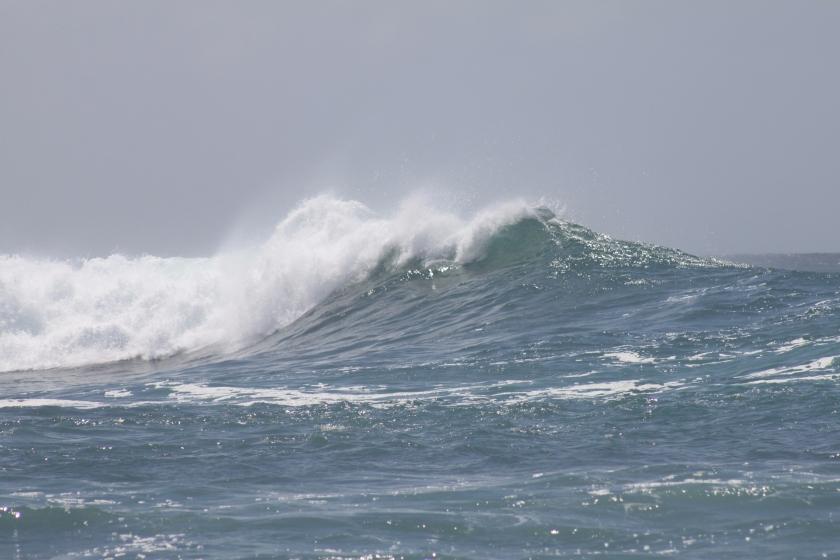 Wave, Dondra Head