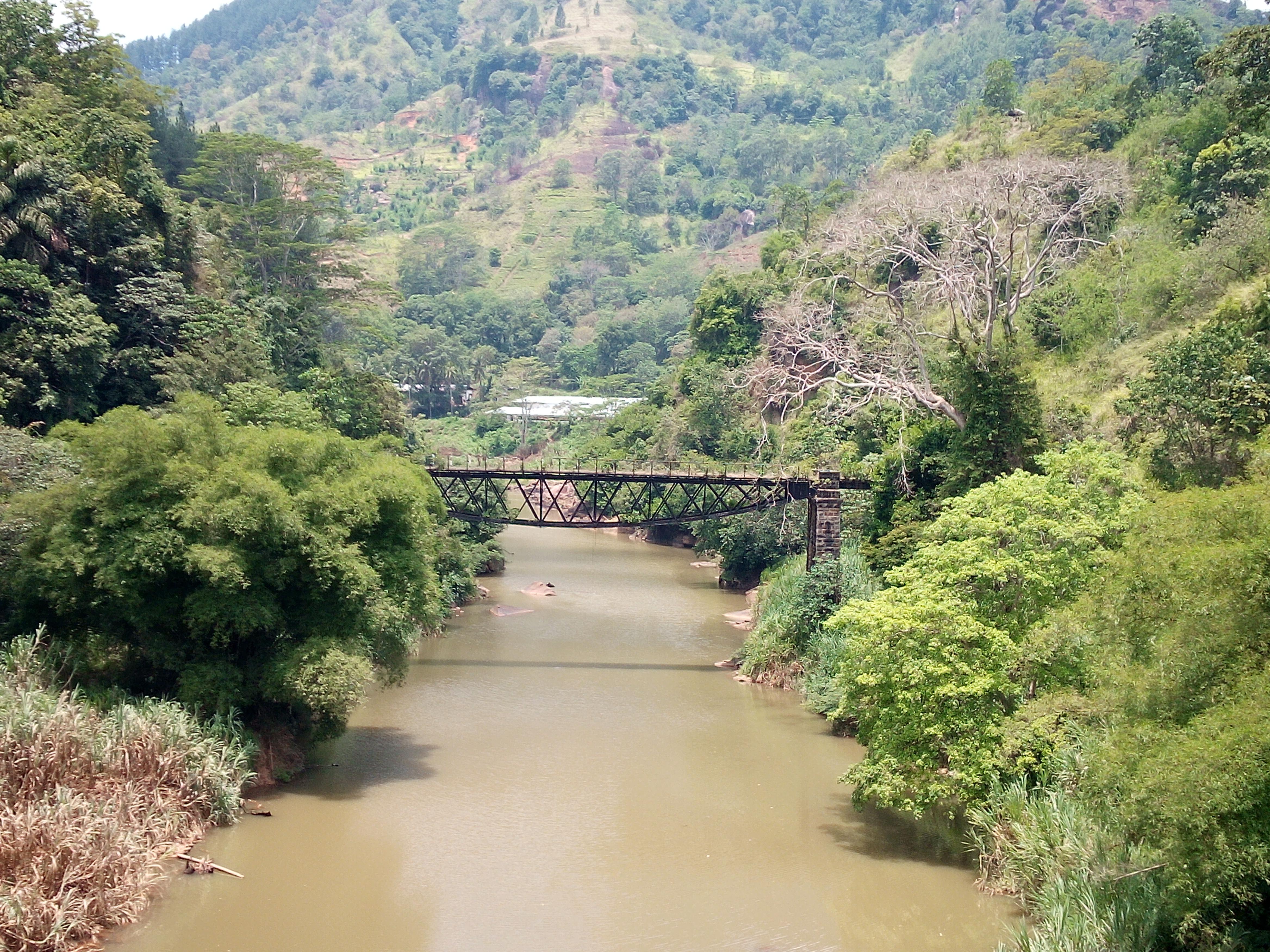 Foolish Bridge