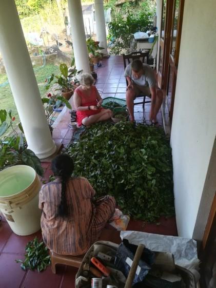 cleaning on the veranda - Sally, Rani and Jake